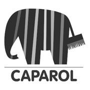 180-caparol